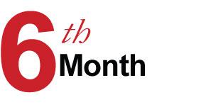 6 Months – Stabilization Phase