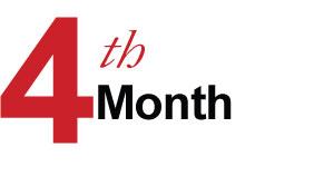 4 Months – Optimum-Effect Phase